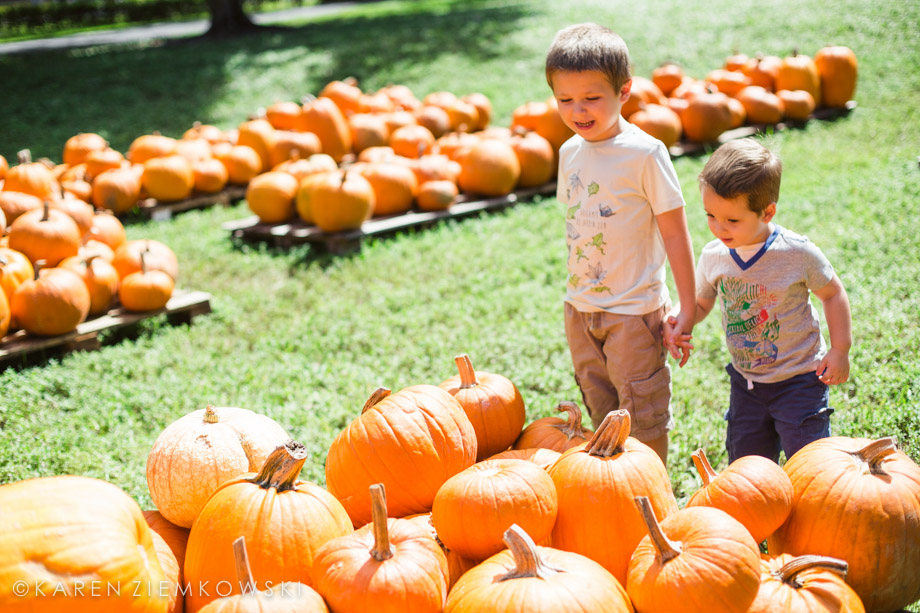 Brothers Picking Pumpkins | BrightAutumnSun.com